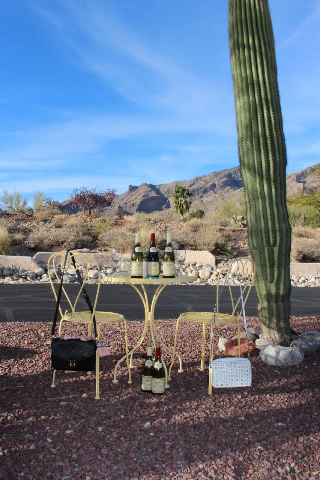 This is a shot of the picnic table, our purses hanging on the yellow picnic chairs, and the Louis Jadot wine sitting on a yellow French table with the Sonoran desert in the background.