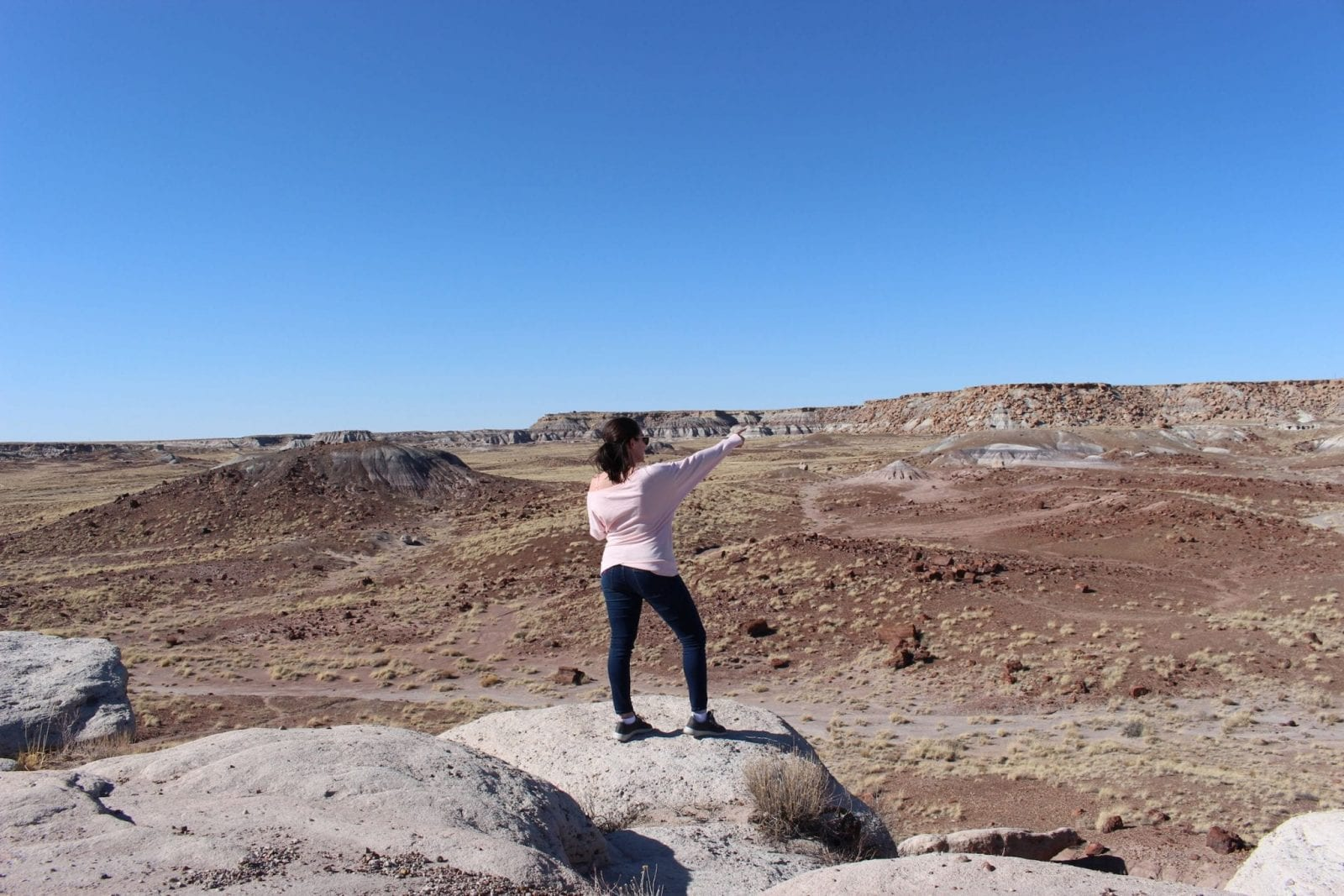 Pointing to the Distance at the Petrified Forest