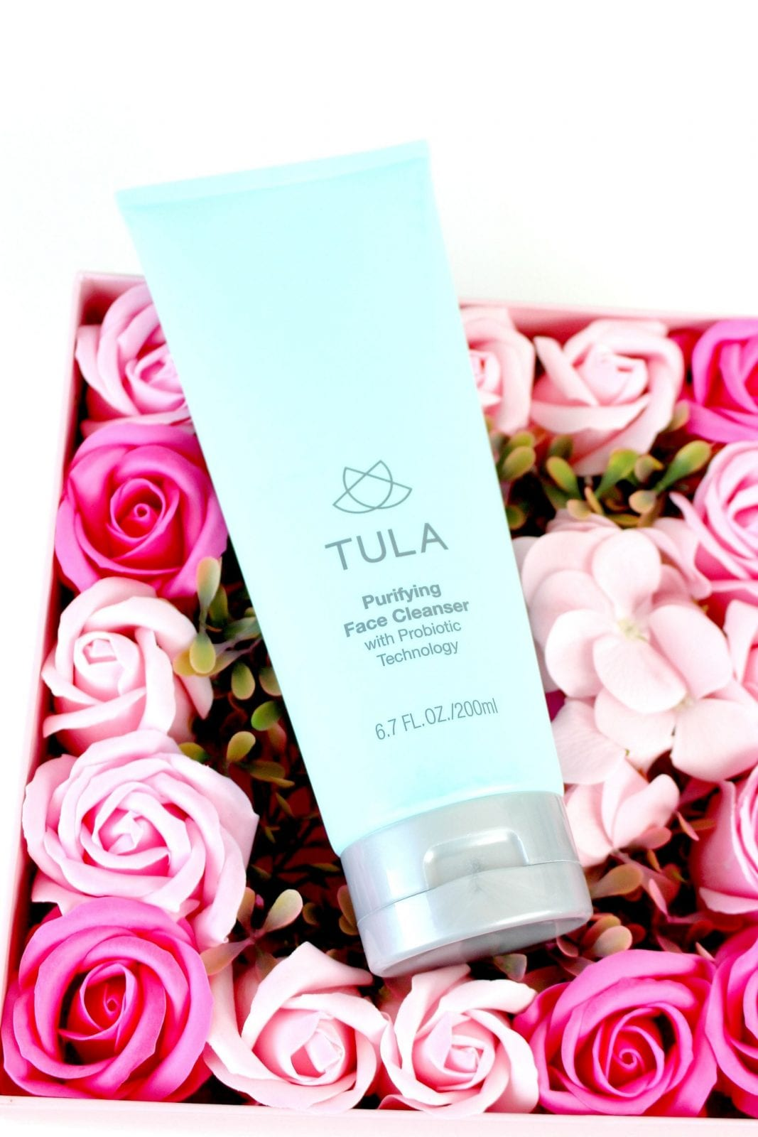 This is a close up of the Tula Skin Care Purifying Cleanser, which is so effective and the best cleanser.